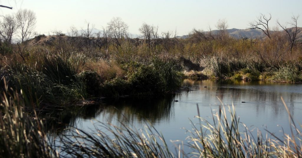 L.A. Hikes: Hidden wildlife sanctuary near the urban edge