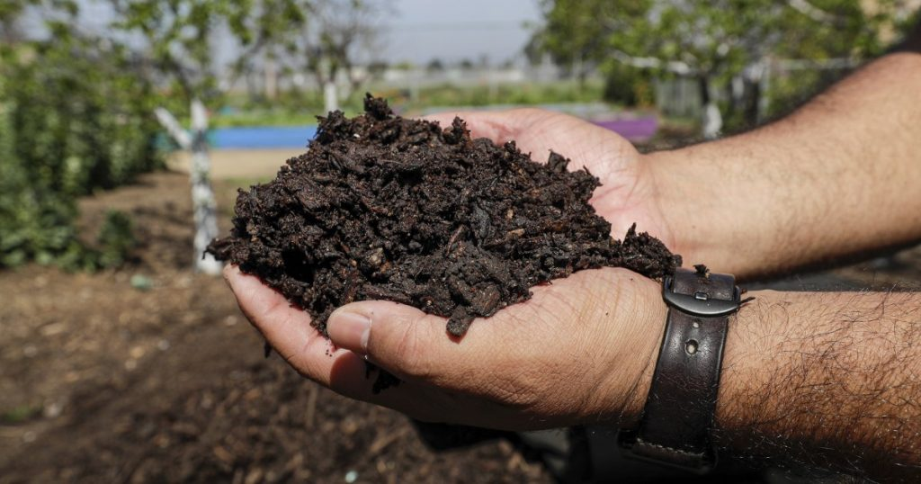 How to make compost and maybe save the world too