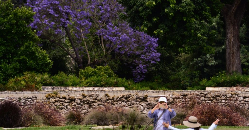 Public gardens reopening in SoCal: What you need to know
