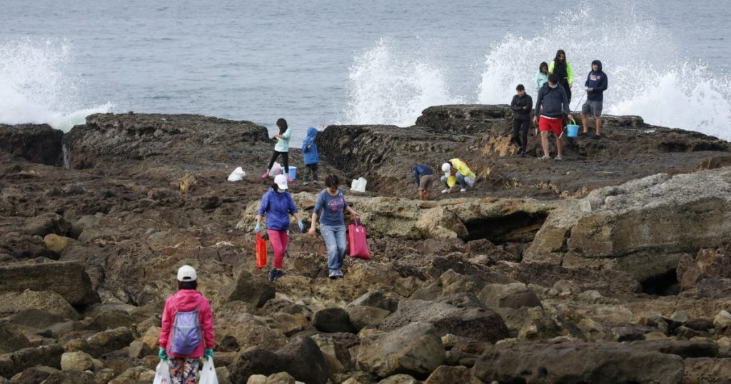 Crowds swarm San Pedro tide pools in search of free seafood