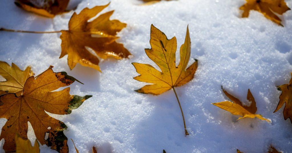 How to stay warm at outdoor Thanksgiving, holiday gatherings