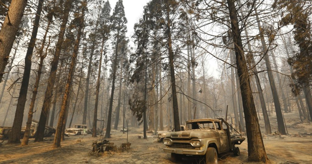 Changes from wildfires in California forests will last centuries