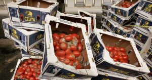 Op-Ed: How reducing food waste can help solve the climate crisis
