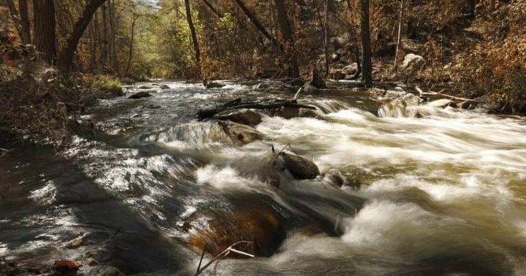 New wilderness protections sought for 600,000 acres in California